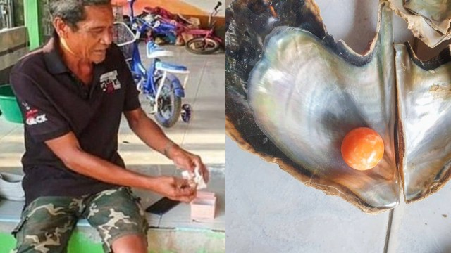 Gelar Pesta Usai Temukan Mutiara Senilai Rp4,6 M, Nelayan Ini Ditangkap Polisi (322481)