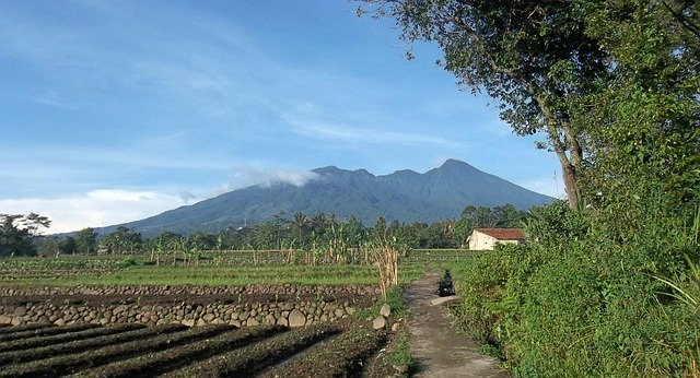 Inilah Tempat Wisata Bogor yang Patut untuk Dikunjungi (14782)