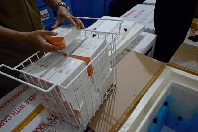 Vaksin Sinovac Tiba di Filipina, Vaksinasi Dimulai Pekan Depan (324753)