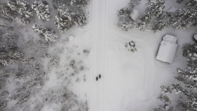 Foto: Momen Ducati Multistrada V4 'Disiksa' di Lingkaran Arktik Kutub Utara (173245)