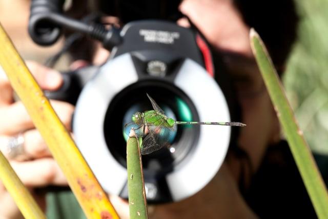 Tips Fotografi: Mengenal Cahaya Buatan dalam Fotografi (86681)