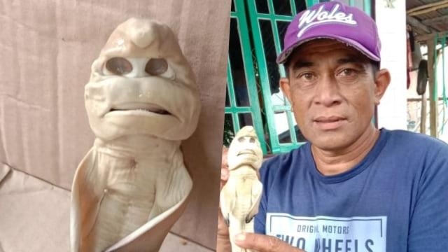 Bukan Editan, Kisah Nelayan Rote Ndao Temukan Hiu Mirip Wajah Manusia  (25307)