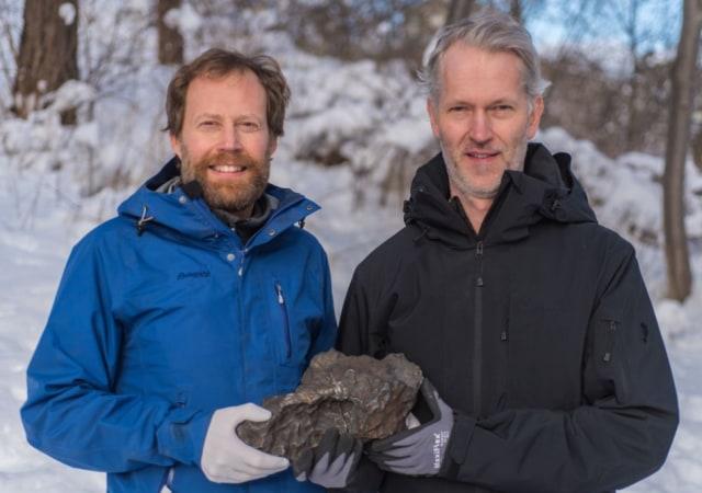 Meteorit Besi 14 Kg yang Jatuh di Swedia Akhirnya Ditemukan (106812)