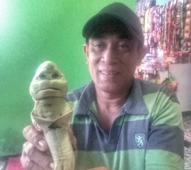 Video: Cerita Nelayan Rote Ndao Temukan Hiu Berwajah Mirip Manusia (194656)