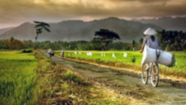 Pembangunan Kawasan Perdesaan Menuju Desa Mandiri (22150)