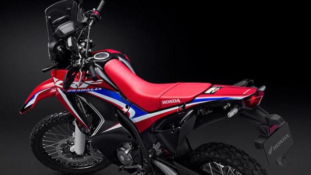 Honda CRF250 Rally 2021 Meluncur di Indonesia, Ini 9 Ubahannya! (365909)