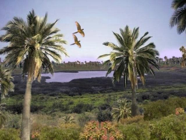 Belajar Lebih Mencintai Bumi dari Peristiwa di Pulau Paskah (532)