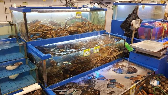 Berburu Alaskan King Crab di Noryangjin Fish Market (319741)