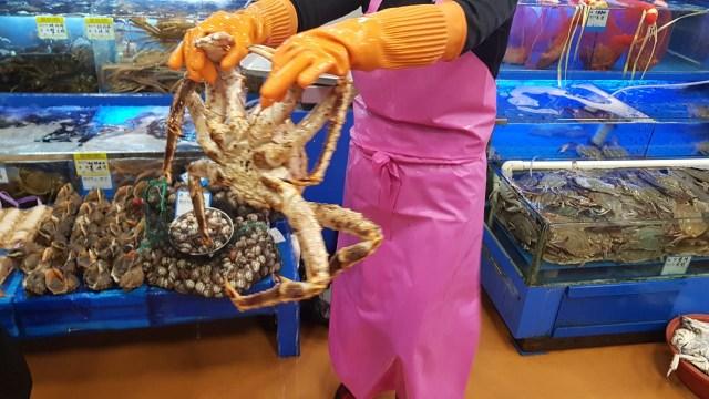 Berburu Alaskan King Crab di Noryangjin Fish Market (319732)