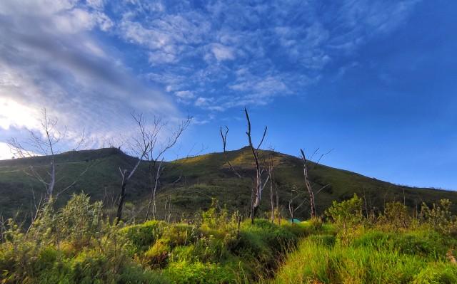 Apa Kabar Gunung Merbabu, Benarkah Akan Segera Dibuka untuk Pendakian? (8498)