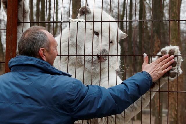 Foto: Melihat Kebun Binatang yang Terdampak Corona di Hungaria (114427)