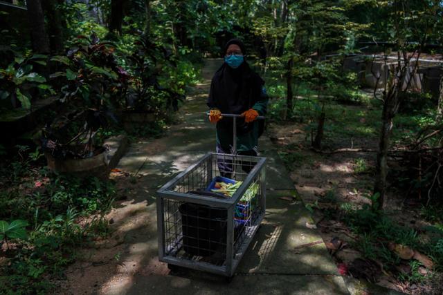 Foto: Rehabilitasi Satwa di Tengah Pandemi (46614)
