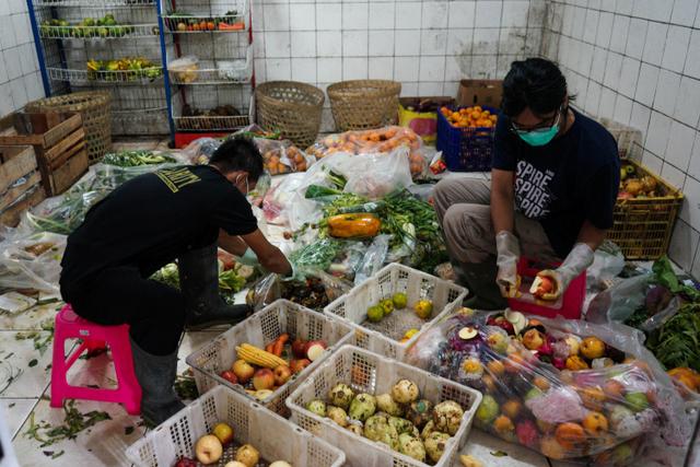 Foto: Rehabilitasi Satwa di Tengah Pandemi (46613)