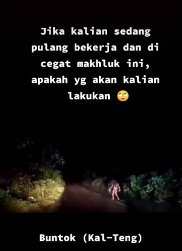 Pekerja di Kalimantan Dicegat Makhluk Mengerikan saat Pulang Tengah Malam (283895)