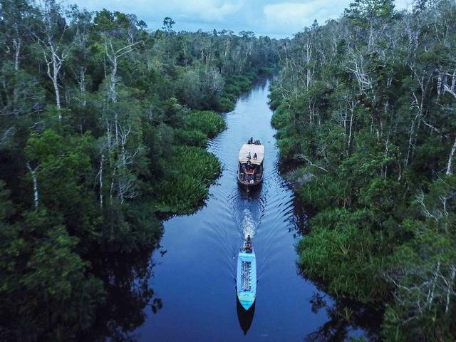 Taman Nasional Tanjung Puting Perpanjang Penutupan hingga 15 Agustus 2021 (157556)
