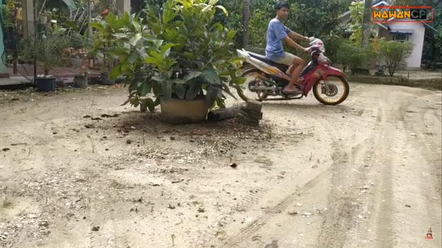 Knalpot Motor dari Bambu, Bagaimana Bunyinya dan Bisa Ditilang Polisi Juga?  (316146)