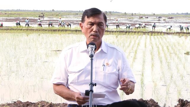 Jokowi Segera Bentuk Kementerian Investasi, Kementerian Luhut Mau Dilebur Juga? (1)