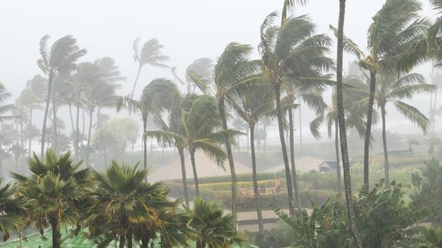 BMKG Deteksi Bibit Siklon Tropis 94W, Masyarakat Diminta Waspada (34824)