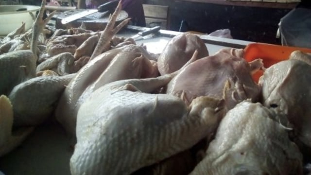Harga Daging Ayam di Gunungkidul Mulai Melonjak Capai Rp 38 Ribu per Kilogram (375219)