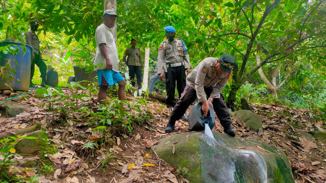 Polisi Bongkar Penyulingan Cap Tikus di Tolitoli, Sulteng (33950)