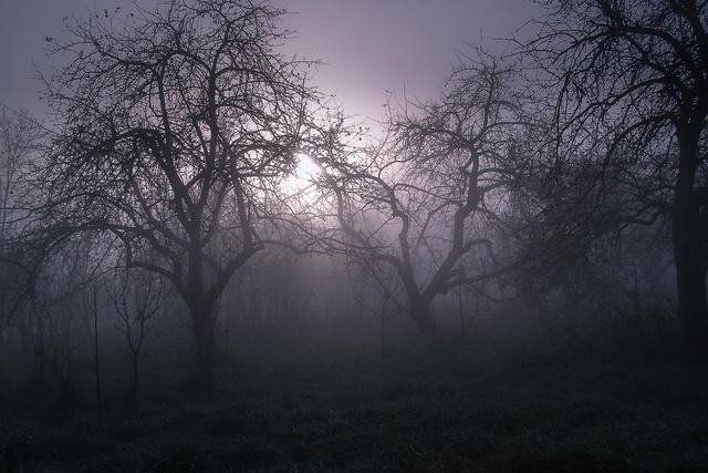 Misteri Tanjakan Banganga, Lelembut Pemakan Nyawa (584530)