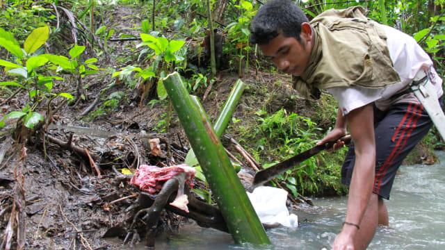 Orang Togutil Sang Penjaga Hutan Halmahera (344664)