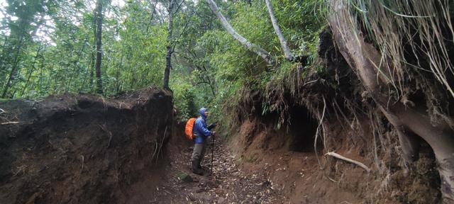 Mengintip Kembali Thekelan, Jalur Pendakian Tertua Merbabu (Bagian 1) (575046)