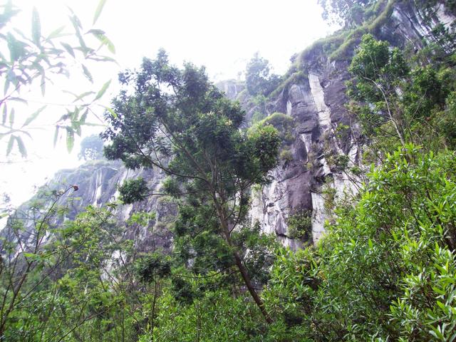 Mengintip Kembali Thekelan, Jalur Pendakian Tertua Merbabu (Bagian 1) (575049)