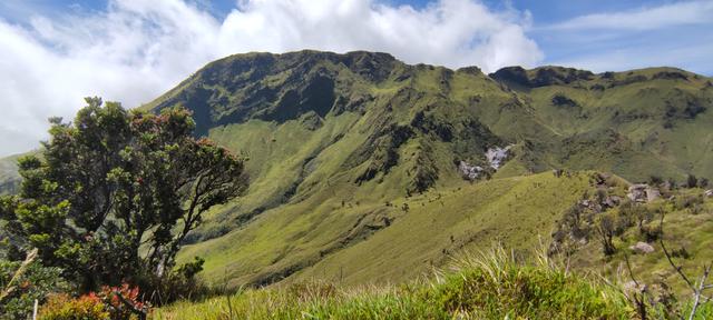 Mengintip Kembali Thekelan, Jalur Pendakian Tertua Merbabu (Bagian 2) (11202)