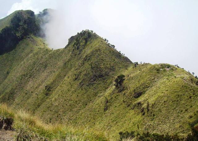 Mengintip Kembali Thekelan, Jalur Pendakian Tertua Merbabu (Bagian 2) (11204)