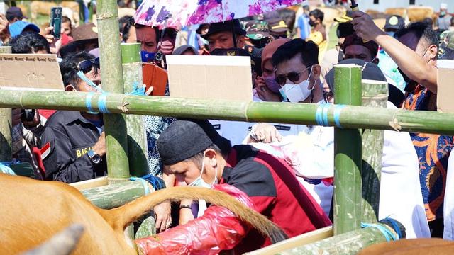 Mentan Syahrul Dorong Jeneponto Jadi Sentra Pertanian dan Peternakan Berkualitas (55766)