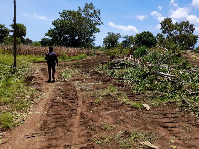 Lahan Relokasi Pemukiman Lembata Mulai Dibersihkan, 160 Rumah Akan Dibangun (856550)