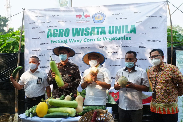 Hari Ini, Agrowisata Melon Unila Resmi Dibuka untuk Masyarakat Umum (333931)