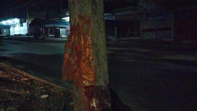 Pelaku Tabrak Lari Dikejar Kakak Korban hingga Tabrak Pohon di Kemiling (721332)