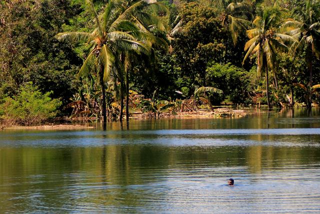 Foto: Melihat Danau Baru yang Terbentuk usai Siklon Tropis Seroja di Kupang (138413)