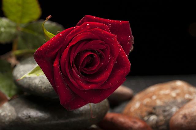 Love Quartz, Benda Legendaris yang Katanya Bisa Menemukan Cinta Sejati (92978)