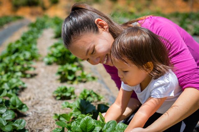Manfaat Bahan Pangan Organik untuk Tumbuh Kembang Anak (73042)