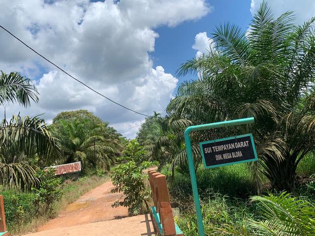 Dusun Mega Blora Isolasi Mandiri: Sudah 9 Warga yang Sembuh dari Corona (19199)