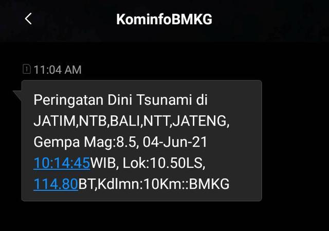 Ada SMS Peringatan Tsunami di Bali, NTB, NTT, dan Jateng, Ternyata Sistem Error (71007)