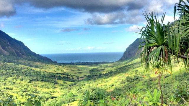 Hawaii Bagi-bagi Ratusan Kambing ke Warga untuk Selamatkan Lingkungan (146210)