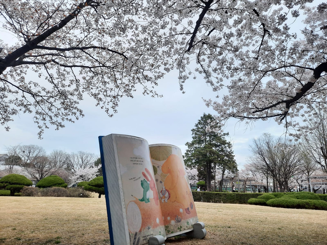 Lokasi Terbaik Melihat Sakura Mekar di Seoul, Korea Selatan (592807)