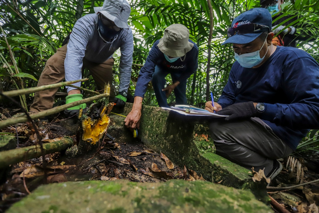 Penemuan Peninggalan Markas Belanda di Pulau Boyan-Batam (327852)