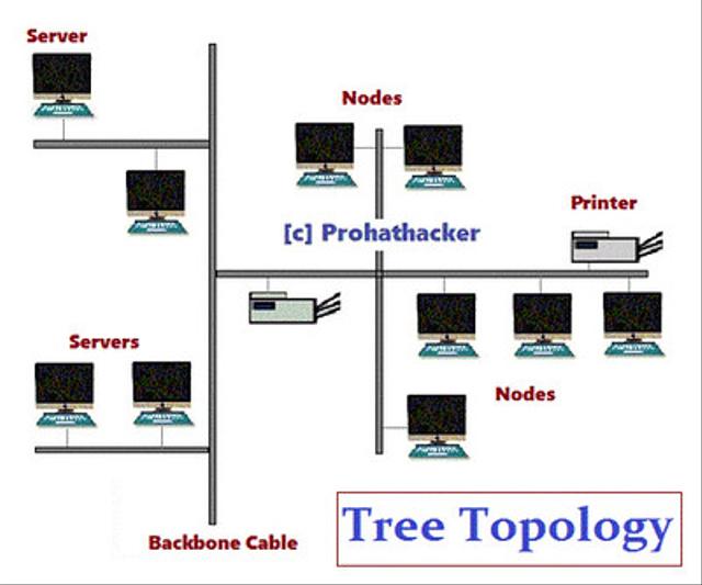 Topologi Jaringan Komputer, Mengenal 6 Jenisnya (401801)