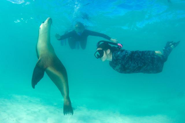 5 Aktivitas Seru Bareng Keluarga saat Berlibur ke Australia Barat (3)
