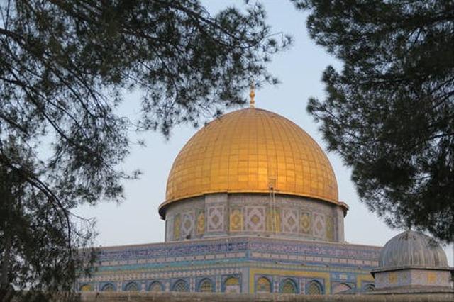 Bagaimana Kabarmu Palestina? (654642)
