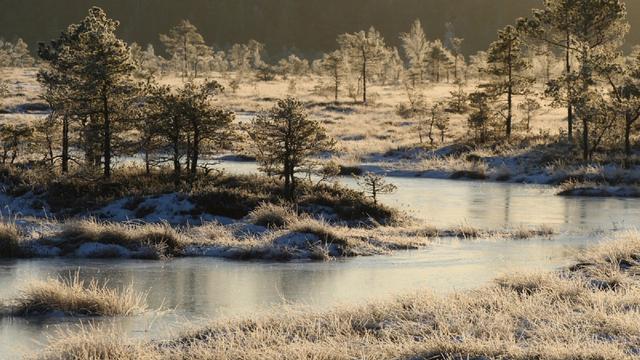 Estonia, Negara Lima Musim (828894)
