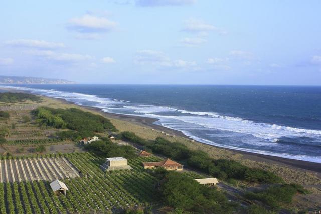 Tempat Wisata di Jogja, Kunjungi 4 Pantai Mempesona Ini (41919)