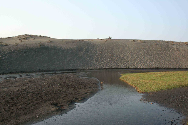 Pengertian dan Contoh Ekosistem Air Tawar (97293)