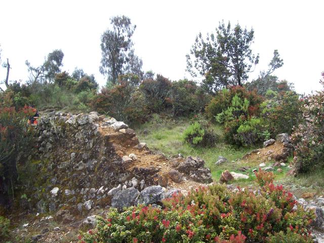 Mengintip Jejak Situs Purbakala Hindu Tertinggi di Pulau Jawa di Gunung Argopuro (27440)