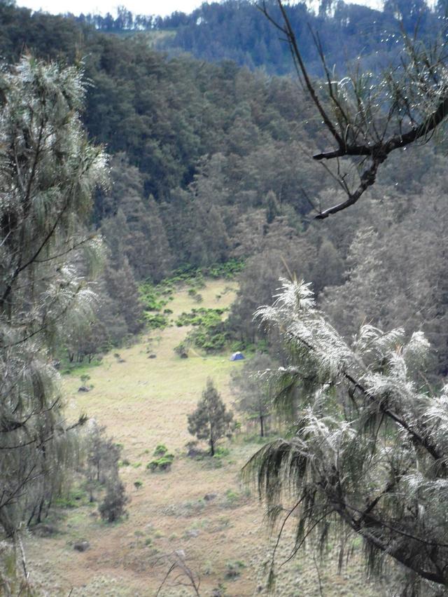 Mengintip Jejak Situs Purbakala Hindu Tertinggi di Pulau Jawa di Gunung Argopuro (27441)